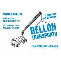 bellon_site.jpg