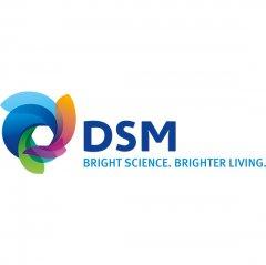 dsm_site.jpg